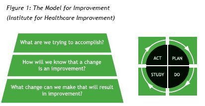 1000 Lives Improvement The Quality Improvement Guide The Model